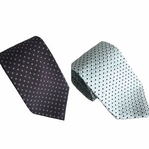 TWO MENS SILK TIES - Zegna & Canali